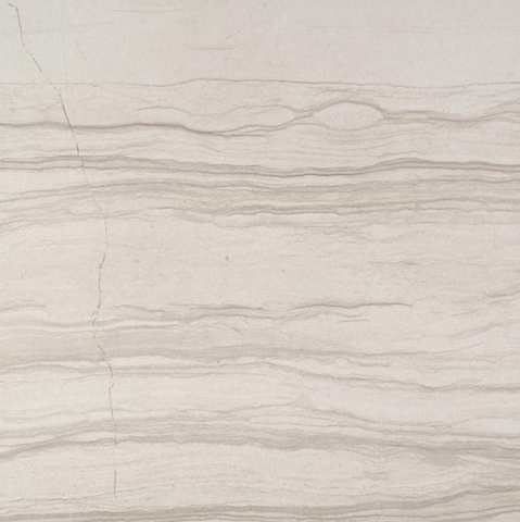 Action Cue Porcelain Polished Marble Look Tile 12X24