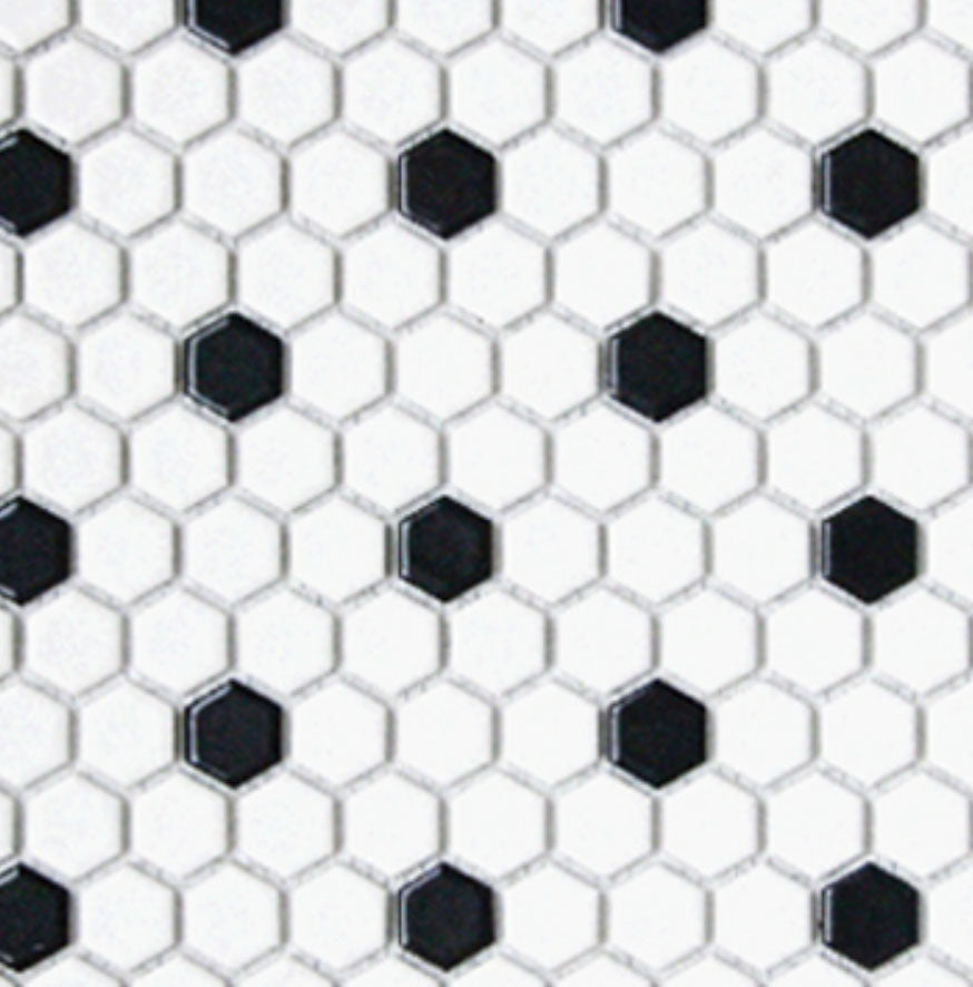 White and Black Matte Porcelain Hexagon Mosaic
