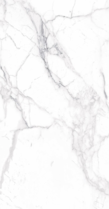 Carrara Premium Porcelain Mable Look Tile 24x48