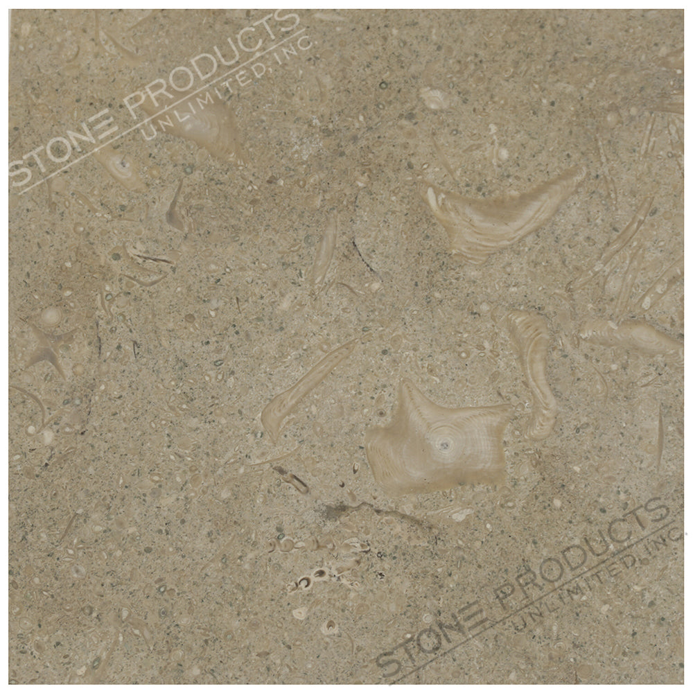 Seagrass Limestone Square Tile