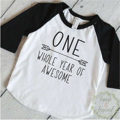 1st Birthday Boy Shirt - One Whole Year of Awesome - Bump and Beyond Designs