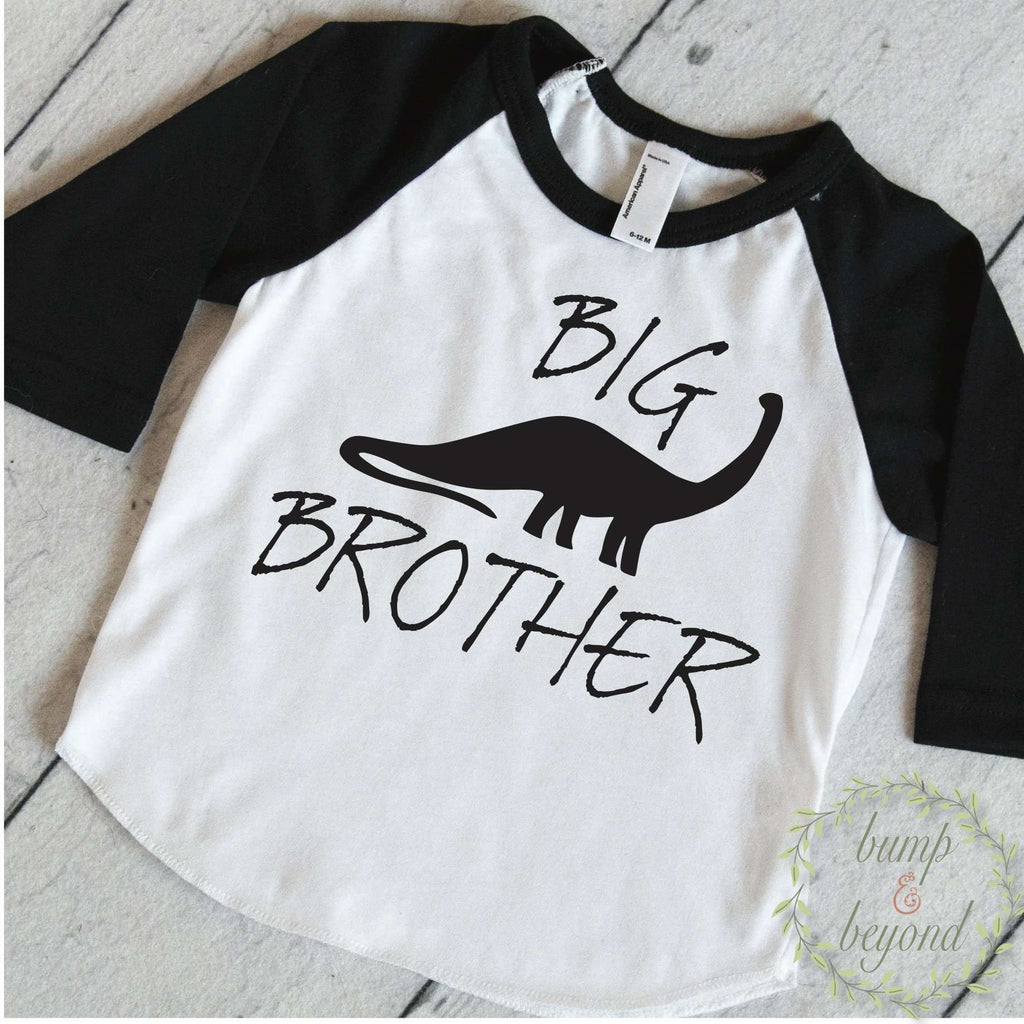 Dinosaur Big Brother Shirt, Dino Big Brother Shirt, Sibling Shirts, Kids Big Brother Little Brother Outfits, Big Brother Gift 320 - Bump and Beyond Designs