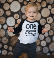 First Birthday Shirt Boy 1st Birthday  Outfit First Birthday Boy Shirt Boy First Birthday Outfit One Whole Year Of Awesome Birthday Boy 157 - Bump and Beyond Designs