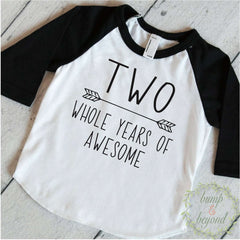 Second Birthday Boy Shirt, Two Whole Years of Awesome - Bump and Beyond Designs