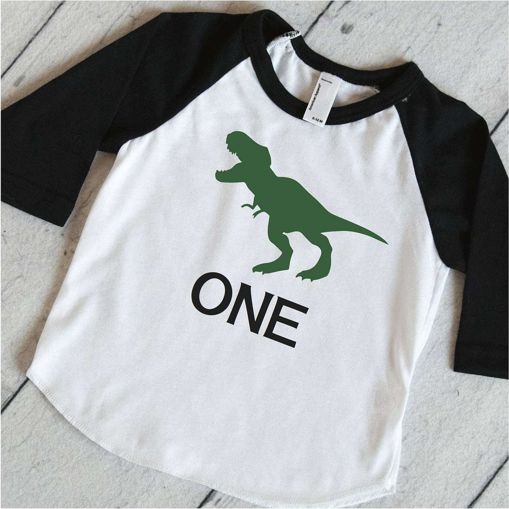 One Year Old Dino Shirt Kids Birthday Outfit Boys Dinosaur T