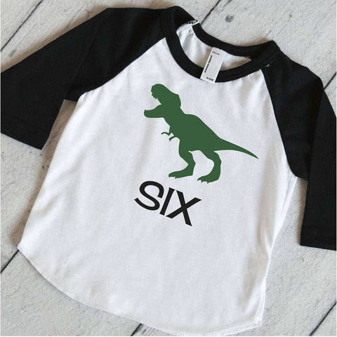 Dinosaur Birthday Party Shirt, Boys Birthday T-Rex Shirt, Dinosaur Birthday Shirt, Kids 6th Birthday Shirt, Dino Sixth Birthday Outfit 317
