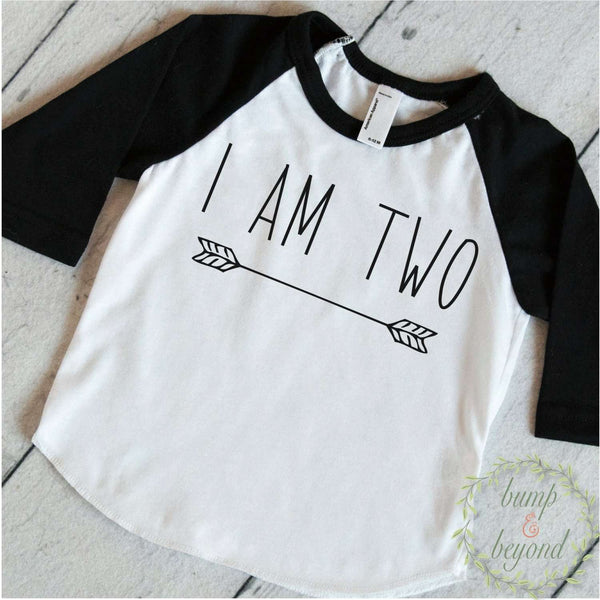 One Year Old Birthday Shirt Boy 1 Years Old Birthday Outfit Raglan Toddler Shirt 1st Birthday Shirt Hipster Boy Clothes Modern Arrow 130 - Bump and Beyond Designs