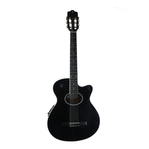 RJ Prestige Acoustic Guitar Package (Nylon)
