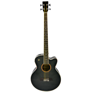 RJ Deluxe (ABG) Acoustic Bass Guitar