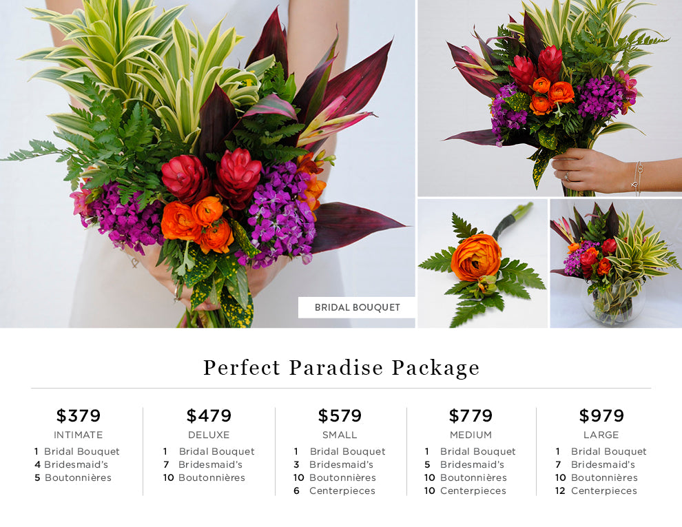 Perfect Paradise Pricing