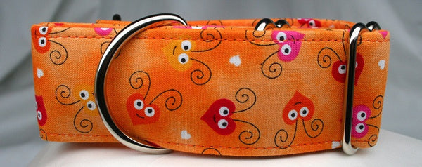 Bee My Baby on Tangerine Fade Collar