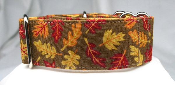 Fall Flutter on Mossy Bark Collar