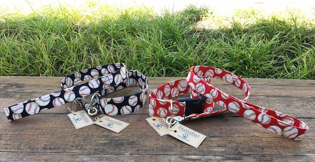 Baseball Heaven Collar & Leash Set