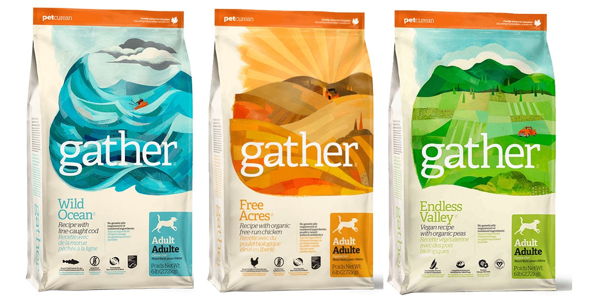 Gather Dry Dog Foods