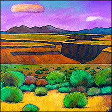 taos canyon rio grande new mexico art prints johnathan harris