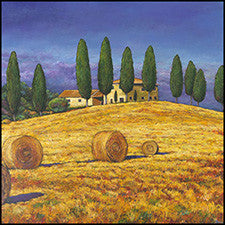 tuscan gold italy art landscape vineyard prints johnathan harris