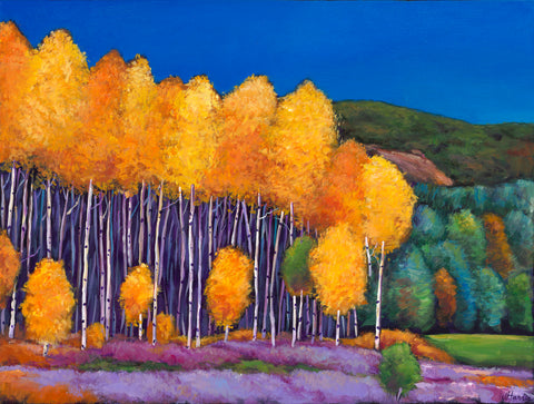 Aspen Wyoming Southwest Landscape Art Print Johnathan Harris