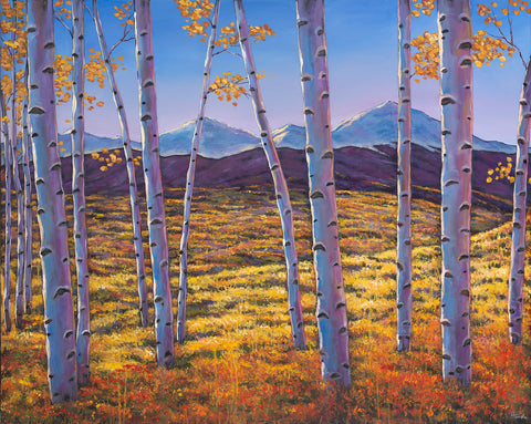 Aspen Colorado Rocky Mountains Southwest Landscape Art Print Johnathan Harris
