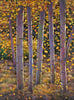 Fall Aspen Trees Colorado Southwest Landscape Art Print Johnathan Harris