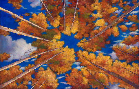 Aspen New Mexico Southwest Landscape Art Print Johnathan Harris