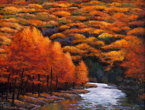 Autumn Stream Contemporary Southwest Art Johnathan Harris