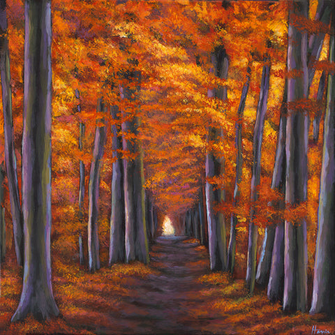 Autumn pathway in the forest Johnathan Harris Fine Art