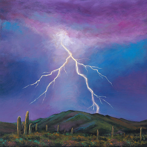 Saguaro Cactus Arizona Lightning Southwest Art Johnathan Harris