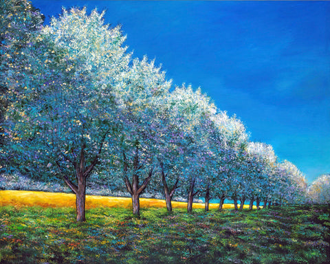Apple Orchard Row Contemporary European Landscape Art Johnathan Harris