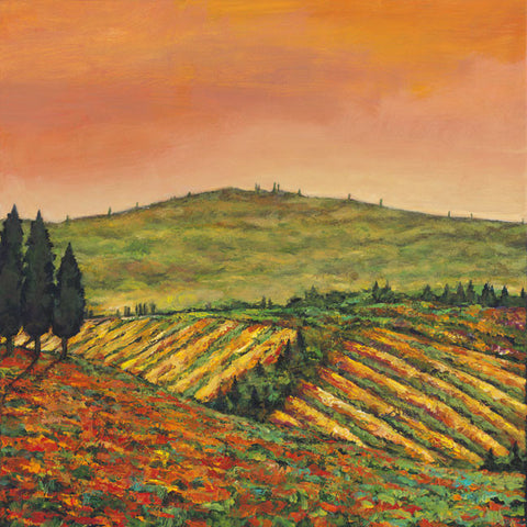 Tuscan Morning painting by Johnathan Harris