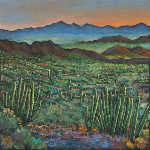 Organ Pipe Cactus Southwest Arizona Art Johnathan Harris