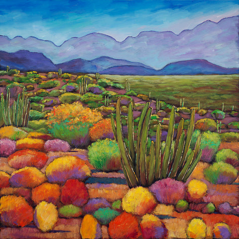 Organ Pipe Cactus National Monument Southwest Arizona Art Print Johnathan Harris