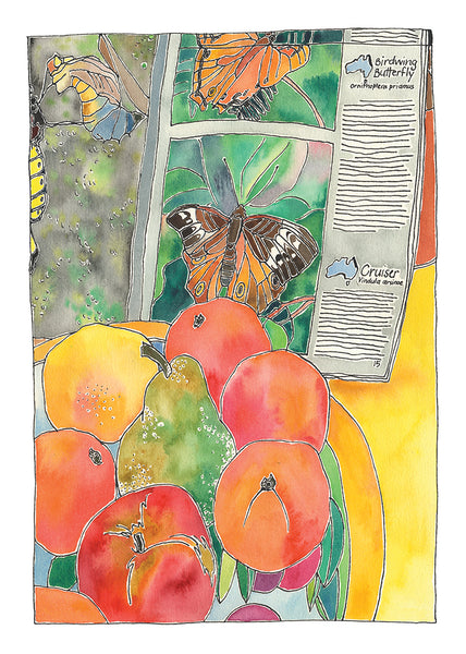 Fruit Bowl and Butterfly Book - pen and watercolour 1989