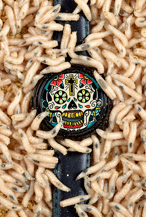 Last Laugh Tattoo watch with maggots