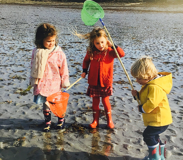 children Crabbbing and rockpooling on the beach