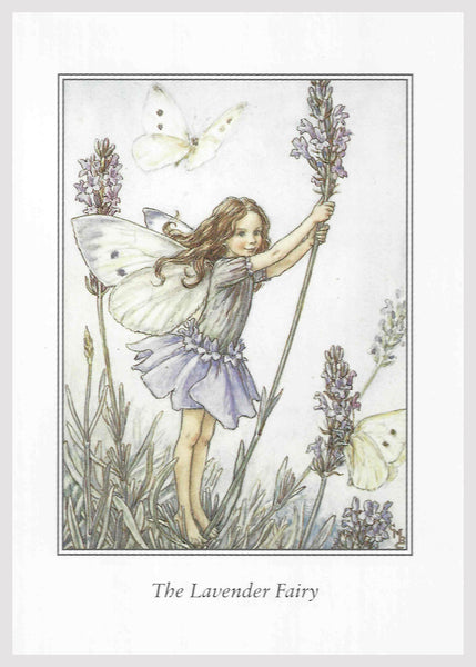 Buy Lavender Flower Fairy Print | Roses and the Stars