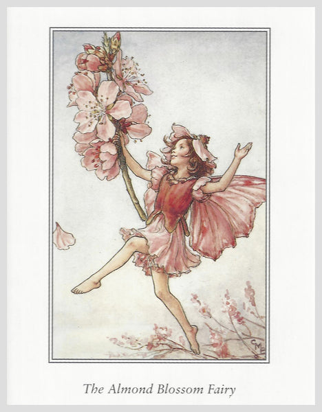 Buy Flower Fairies Framed Print, Almond Blossom | Roses and the Stars