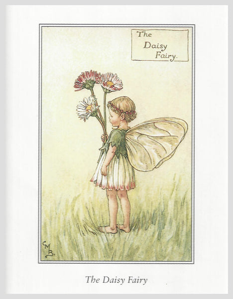 Buy Flower Fairies Framed Print, Daisy | Roses and the Stars