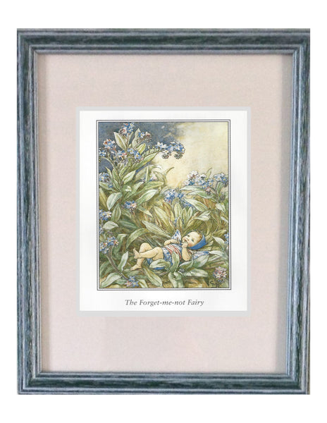 Buy Flower Fairies Framed Print, Forget me not | Roses and the Stars