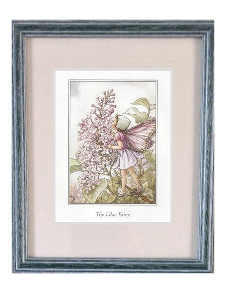 Buy Flower Fairies Framed Print, Lilac | Roses and the Stars