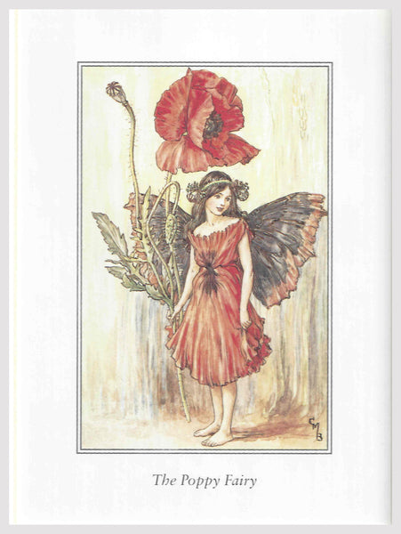 Buy Poppy Flower Fairy Print | Roses and the Stars
