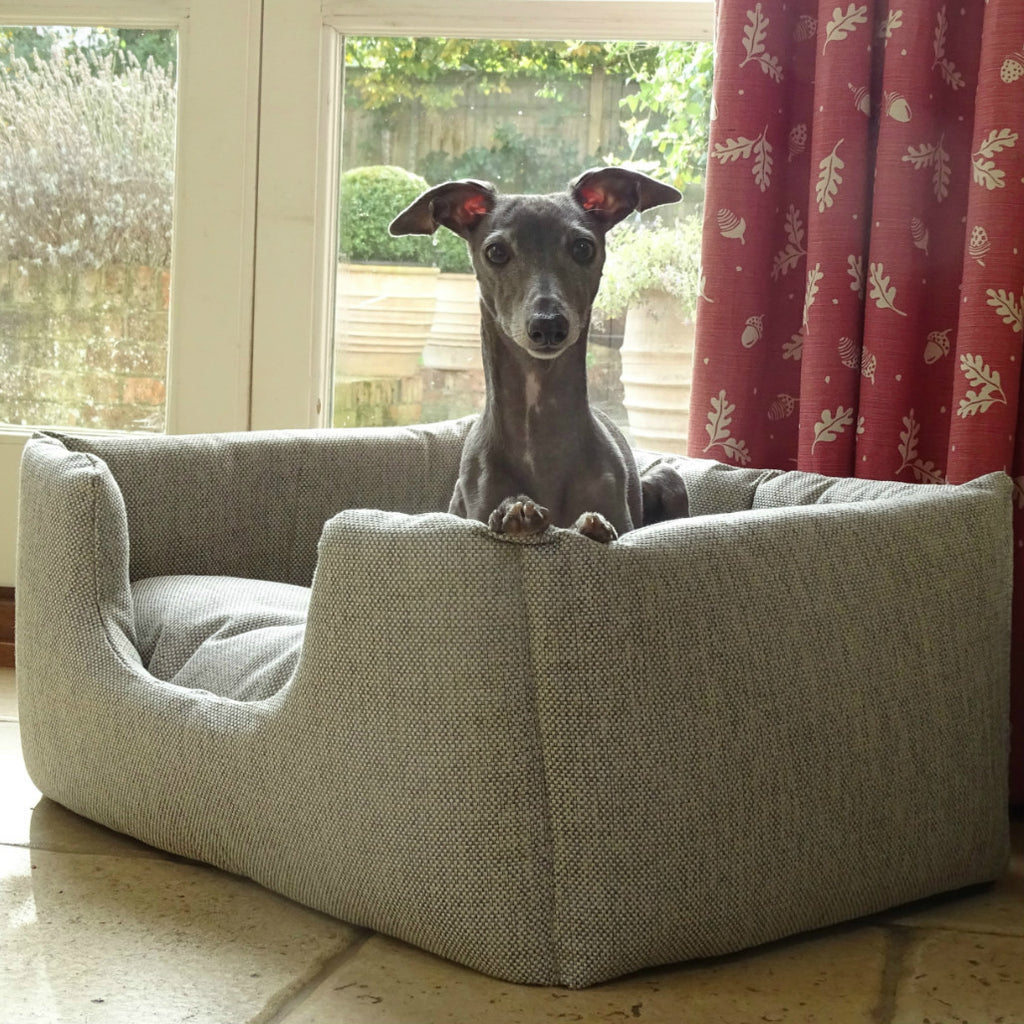 Italian Greyhound in Charley Chau Deeply Dishy Weave bed in Linen