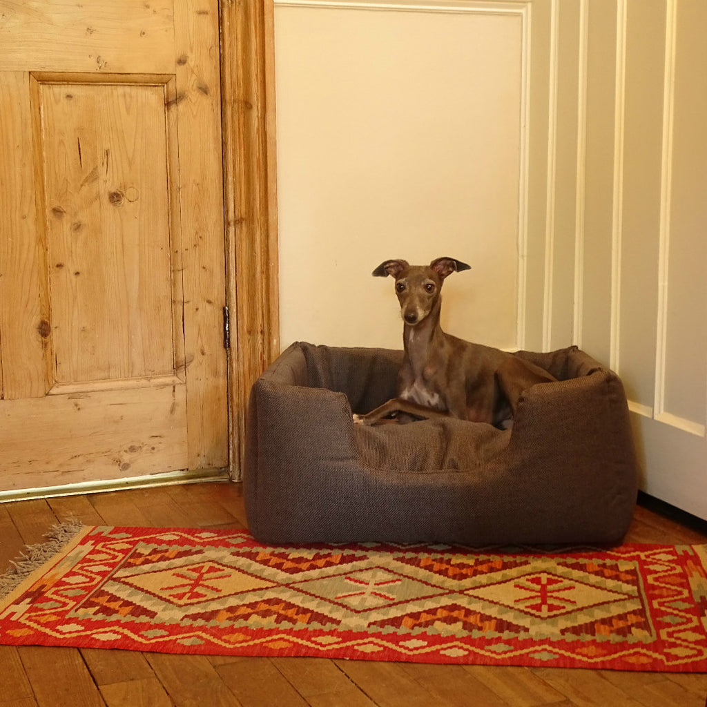Italian Greyhound in Charley Chau Deeply Dishy Weave bed in Slate