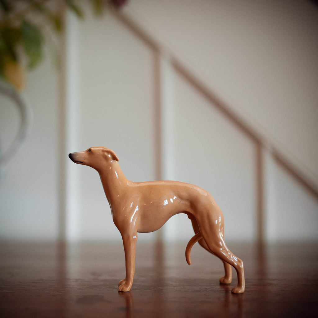 Fawn Beswick Whippet 'Wingedfoot Marksman of Allways' ***SOLD***