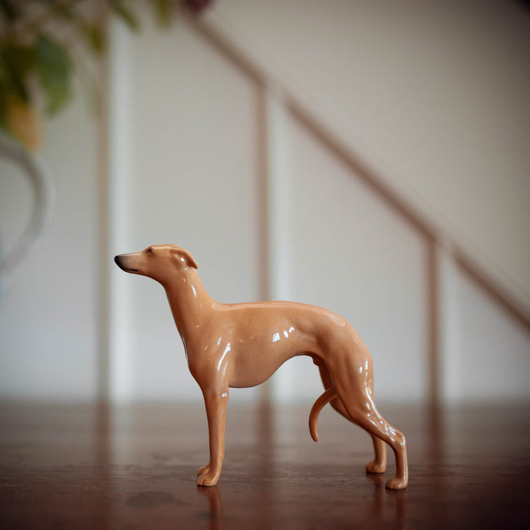 Fawn Beswick Whippet 'Wingedfoot Marksman of Allways'