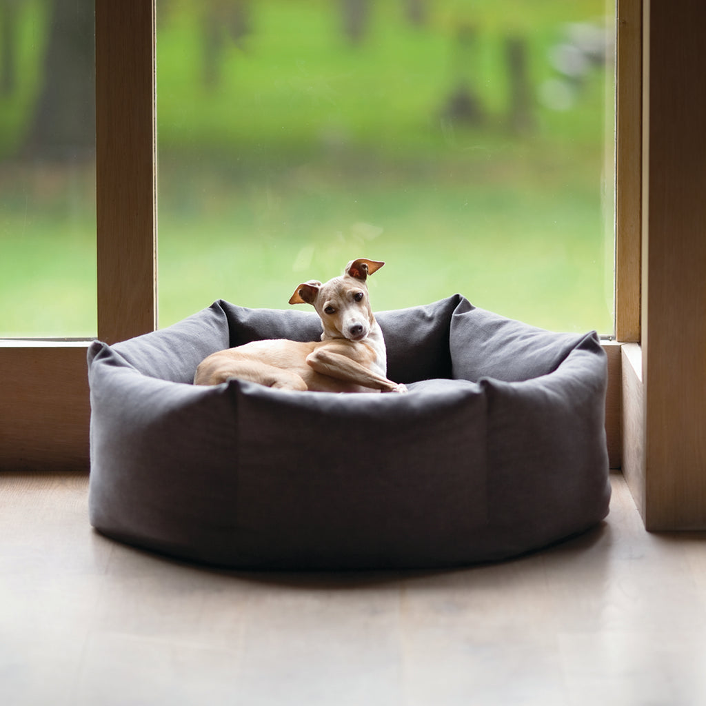 Charley Chau Ducky Donut Dog Bed