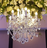 Elisa Chandelier for Hire in Melbourne & Sydney