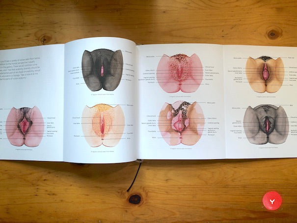"""A Celebration of Vulva Diversity"""
