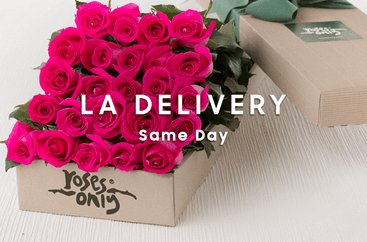 cade674671e Roses Only | Same Day Roses & Flower Delivery in NYC & LA