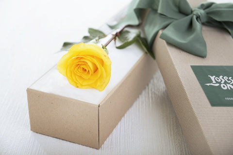 Single Rose Delivery US