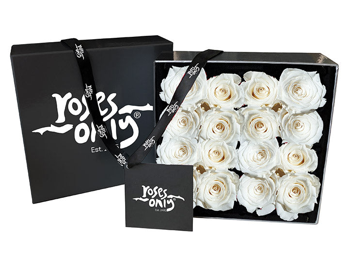 16 White Cream Infinity Preserved Roses